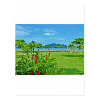 Costa Rica beach outdoor Postcard