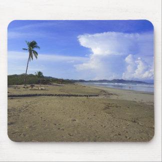 Costa Rica Beach Palm Tree Color Photo Mousepad