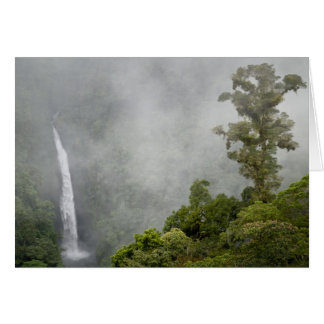 Costa Rica, cloud forest in mountains near La Card