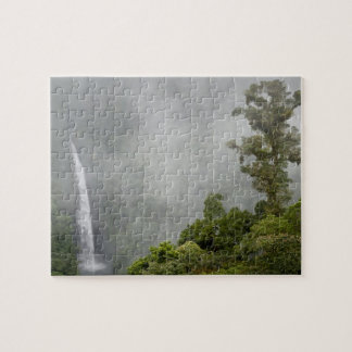 Costa Rica, cloud forest in mountains near La Jigsaw Puzzle