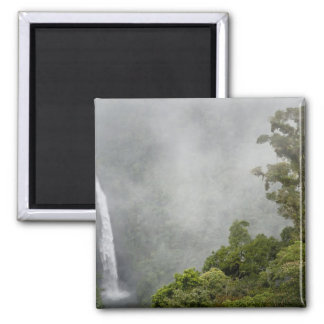 Costa Rica, cloud forest in mountains near La Fridge Magnets