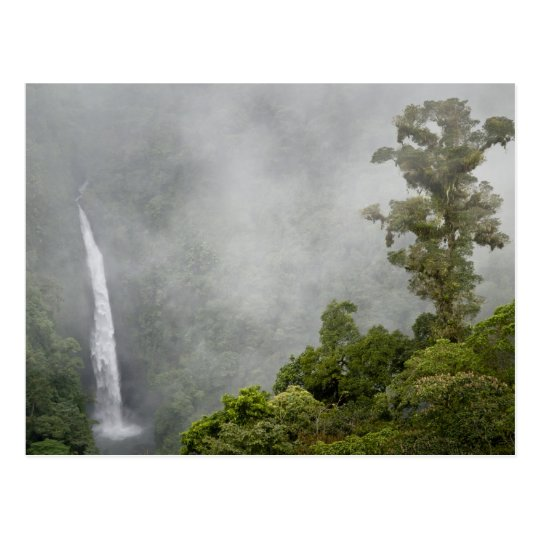 Costa Rica, cloud forest in mountains near La Postcard