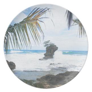 costa rica coast party plates