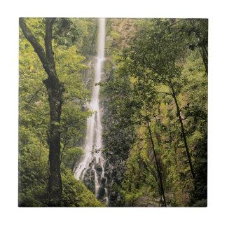 Costa Rica, Cocos Island, Wafer Bay Waterfall Ceramic Tile