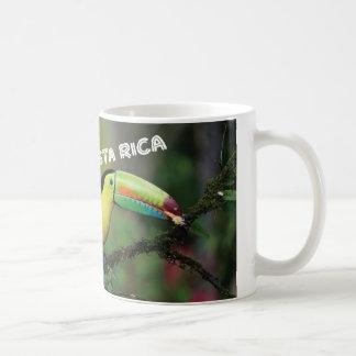 Costa Rica con Toucan Taza