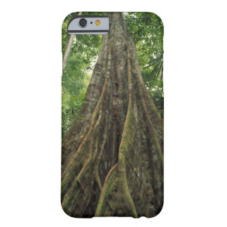Costa Rica, Corcovado National Park, Buttressed Barely There iPhone 6 Case
