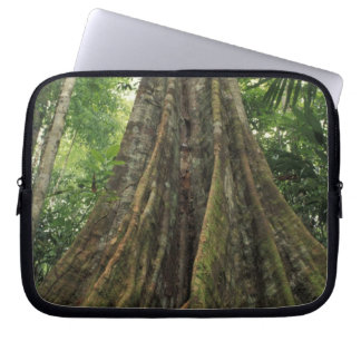 Costa Rica, Corcovado National Park, Buttressed Computer Sleeve