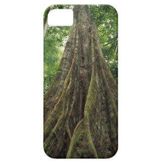 Costa Rica, Corcovado National Park, Buttressed iPhone SE/5/5s Case
