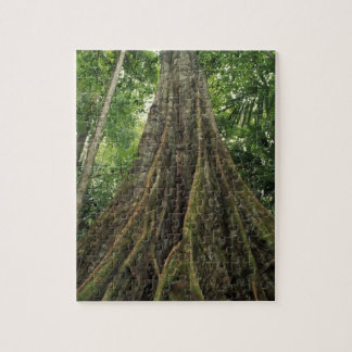 Costa Rica, Corcovado National Park, Buttressed Jigsaw Puzzle