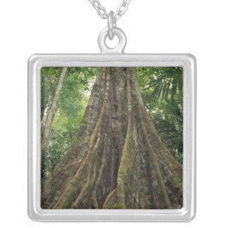 Costa Rica, Corcovado National Park, Buttressed Silver Plated Necklace