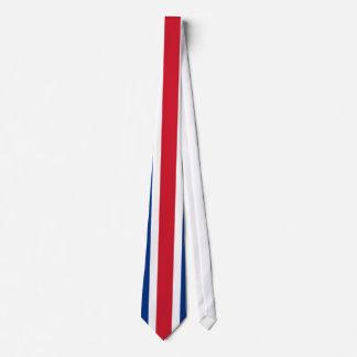 Costa Rica Flag Tie