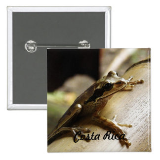 Costa Rica Frog Pins