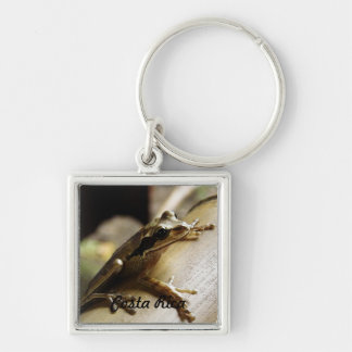 Costa Rica Frog Key Chain