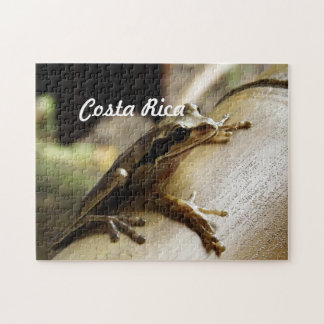 Costa Rica Frog Puzzles