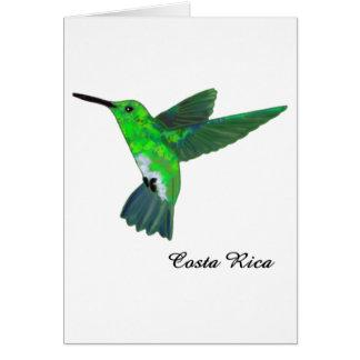 Costa Rica Hummingbird Card
