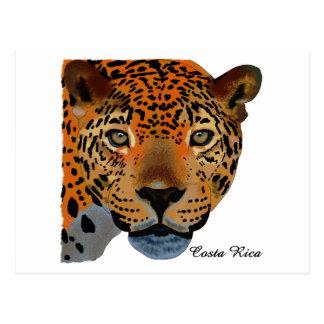 Costa Rica Jaguar Postcard