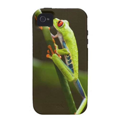 Costa Rica, Monteverde, Red-Eyed Tree Frog Case For The iPhone 4