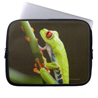 Costa Rica, Monteverde, Red-Eyed Tree Frog Computer Sleeve