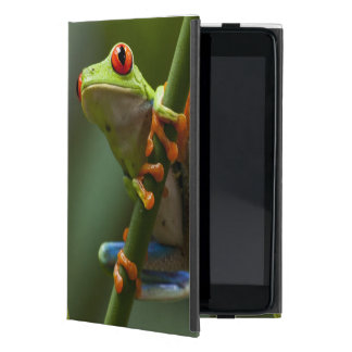 Costa Rica, Monteverde, Red-Eyed Tree Frog iPad Mini Covers