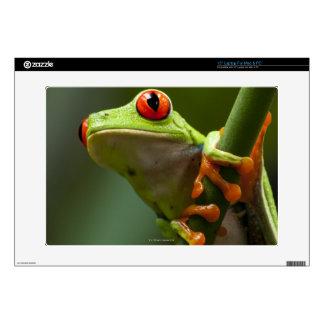 Costa Rica, Monteverde, Red-Eyed Tree Frog Laptop Skin