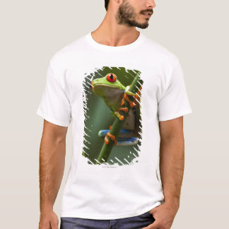 Costa Rica, Monteverde, Red-Eyed Tree Frog T-Shirt