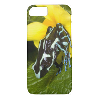 Costa Rica, Osa Peninsula. Close-up of poison iPhone 7 Case