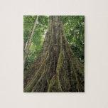 Costa Rica, parque nacional de Corcovado, reforzad Rompecabezas Con Fotos