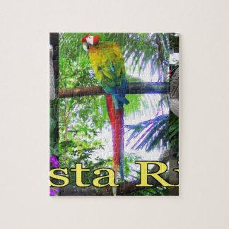 Costa Rica Pre-Columbian Parrot Puzzle