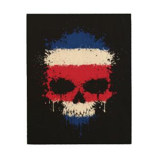 Costa Rica que gotea el cráneo de la salpicadura Cuadro De Madera