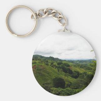 Costa Rica Rain Forest Key Chain