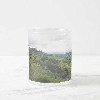 Costa Rica Rain Forest 10 Oz Frosted Glass Coffee Mug