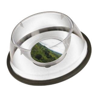 Costa Rica Rain Forest Pet Bowl