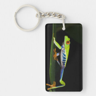 Costa Rica, Red-eyed Tree Frog (Agalychnis Keychain