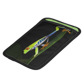 Costa Rica, Red-eyed Tree Frog (Agalychnis Sleeve For iPad Mini