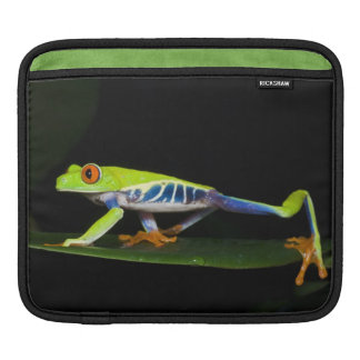Costa Rica, Red-eyed Tree Frog (Agalychnis Sleeve For iPads