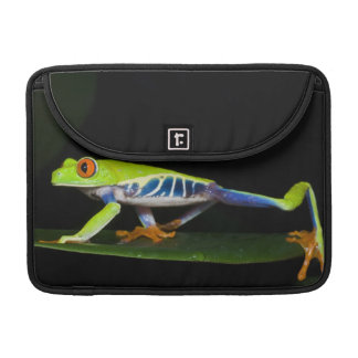 Costa Rica, Red-eyed Tree Frog (Agalychnis Sleeve For MacBook Pro