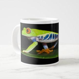 Costa Rica, Red-eyed Tree Frog (Agalychnis Extra Large Mug