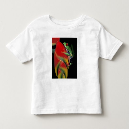 Costa Rica, Red Eyed Tree Frog. Toddler T-shirt