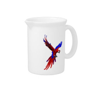 Costa Rica Red Macaw Pitcher