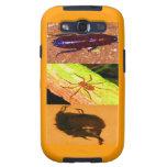 Costa Rica salvaje - arañas, cucarachas e insectos Galaxy SIII Cárcasa