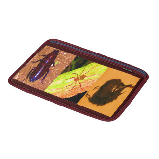 Costa Rica salvaje - arañas cucarachas e insectos Funda MacBook