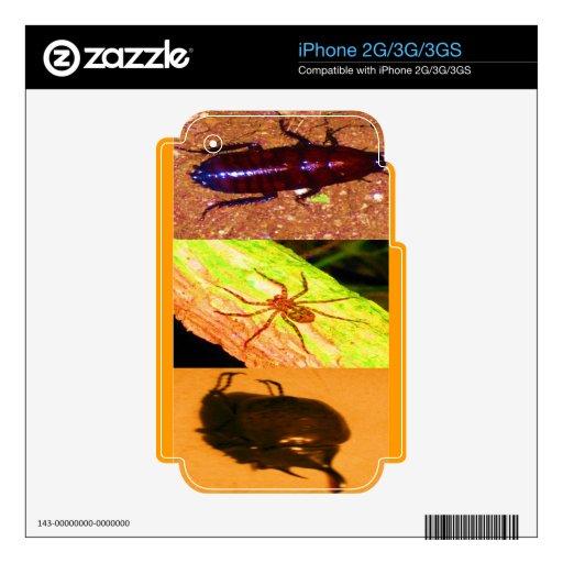 Costa Rica salvaje - arañas, cucarachas e insectos Calcomanías Para El iPhone 3GS