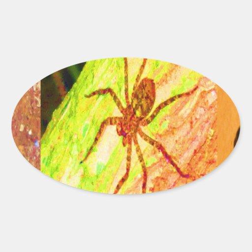 Costa Rica salvaje - arañas, cucarachas e insectos Colcomanias Oval