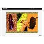 Costa Rica salvaje - arañas, cucarachas e insectos Portátil Skin