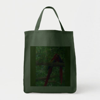 costa rica scarlet macaw bag