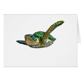 Costa Rica Sea Turtle Card