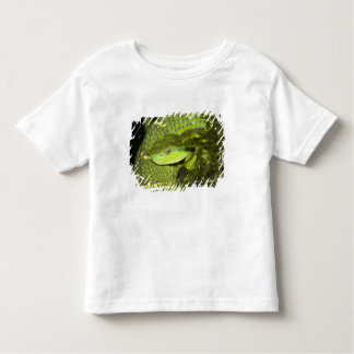 Costa Rica. Striped Palm Viper Bothriechis Toddler T-shirt