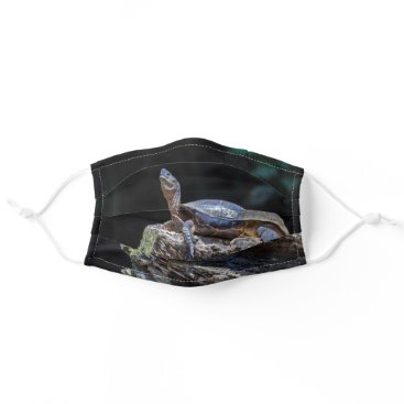Costa Rica, Tortuguero - River Turtle sunbathing Cloth Face Mask