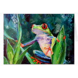 Costa Rica Tree Frog Greeting Card