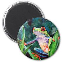 Costa Rica Tree Frog Magnet